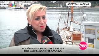 Entertv: Τα γαϊτανάκια του Ευρίπου που ξεσήκωσαν την Χαλκίδα