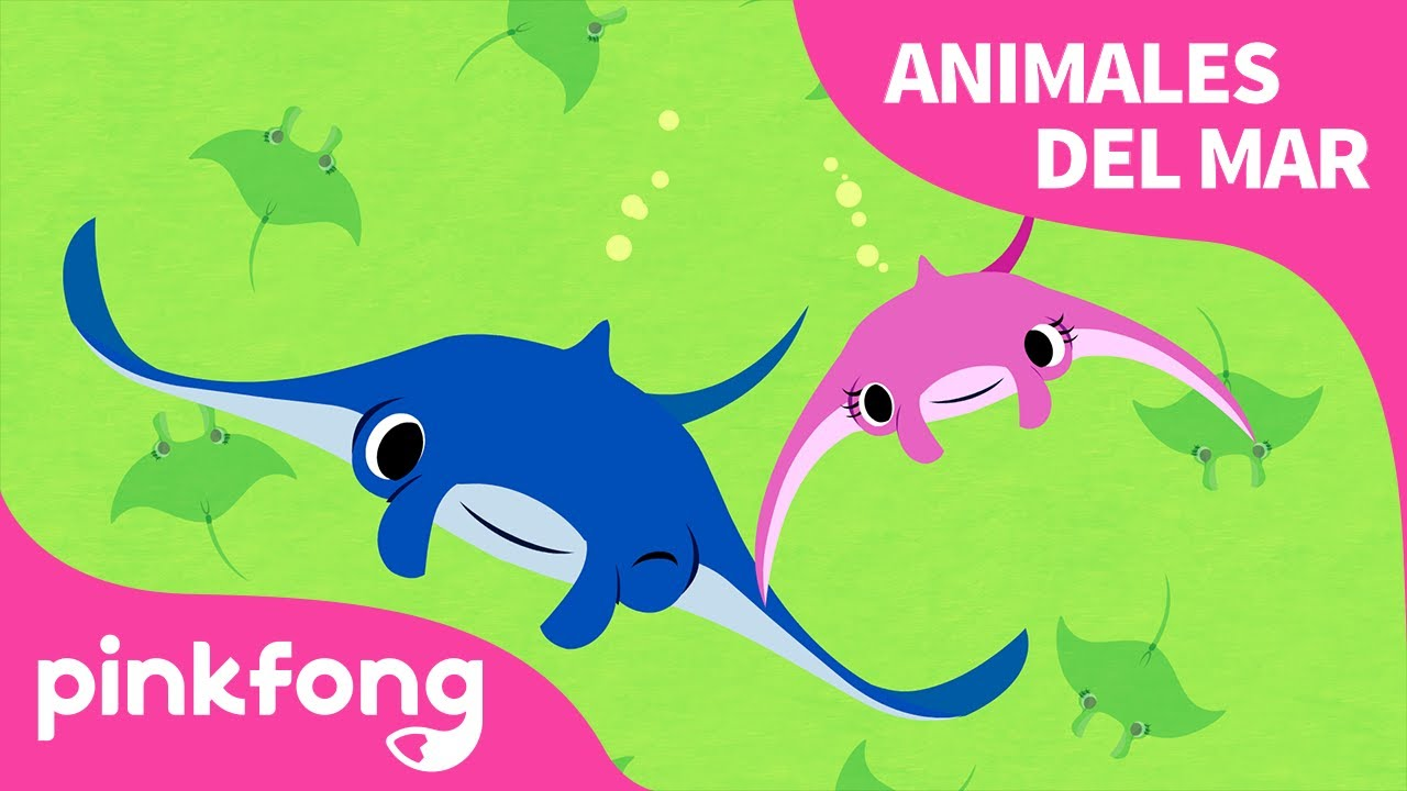 Mantarraya | ¡Superhéroe, mantarraya! | Animales del Mar | Pinkfong Canciones Infantiles