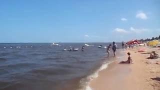 видео Отдых станица Голубицкая