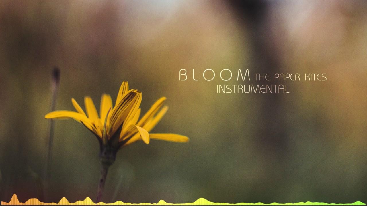 Bloom Instrumental The Paper Kites By Bake Until Golden