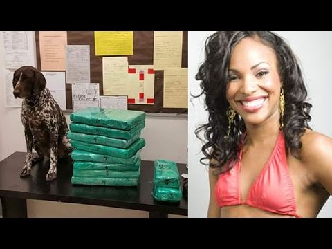 Jamaican Beauty Flight Attendant Arrested Smuggling $3M Cocaine Into LAX