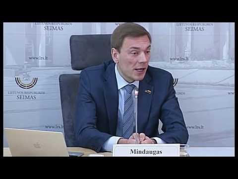 2019-03-14 Seimo nario Mindaugo Puidoko spaudos konf.