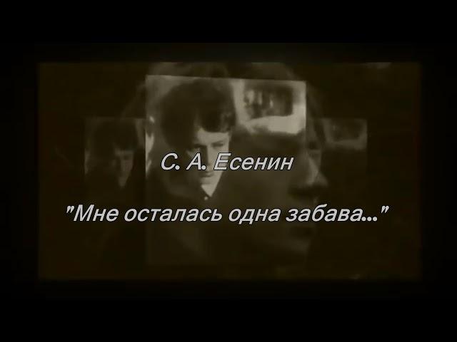 Изображение предпросмотра прочтения – ЕвгенияМироненко читает произведение «Мне осталась одна забава…» С.А.Есенина