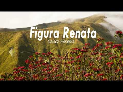 Figura Renata - Balada Penerka