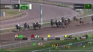 Vidéo de la course PMU PREMIO ZAGARRA