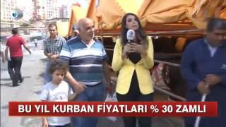 KanalD  Başakşehir Kurban Satış ve Kesim Alanı