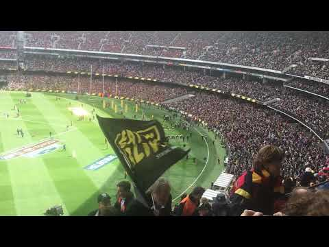 2017 afl grand final Richmond running out on the ground