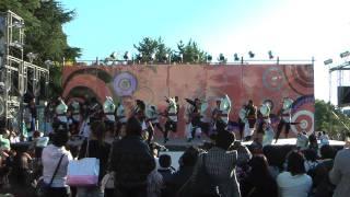 静大祭2010 お茶ノ子祭々 『陽昇』 1回目演舞
