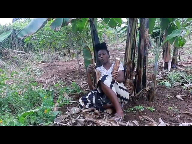 Why I find the Village Life in Africa better than the Life in America || VILLAGE LIFE Uganda