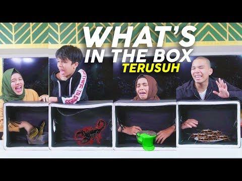 Langsung Lemes, Histeris Pas Tahu Isinya!! What's In The Box Challenge | Gen Halilintar