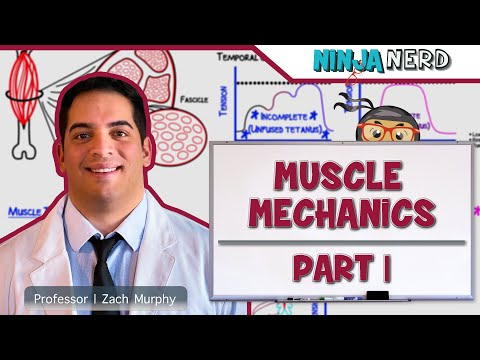 Myology: Muscle Mechanics Part 1- Twitch,  Summation, Tetanus