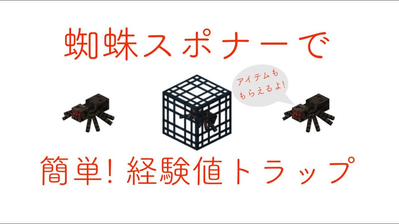 蜘蛛 トラップ
