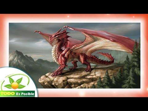 Imagenes de dragones chinos para tatuajes fotos de dragones reales de fuego youtube - Dibujos tribales para tatuar ...