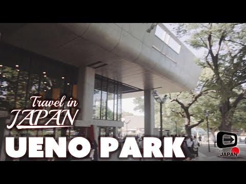 Travel in Japan   Ueno park, Tokyo Bunka Kaikan   Central park in Taito-ku Tokyo 上野公園