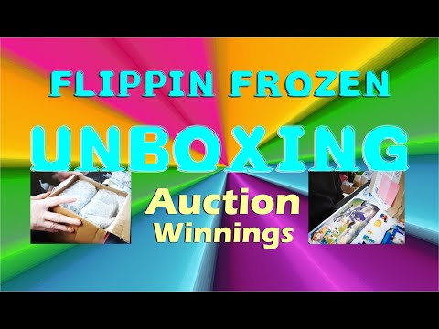 Unboxing  Auctions Items won from Paul Antonelli's.  Sourcing EBAY Inventory
