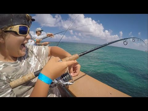Non-stop Pier Action | Everything From Snook To Sharks!