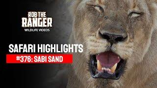Idube Safari Highlights #376: 31 October - 03 November 2015 (Latest Sightings) (4K Video)