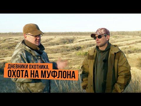 Дневники охотника. Охота на муфлона