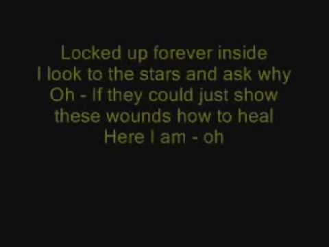 The Offspring - Lightning Rod with lyrics