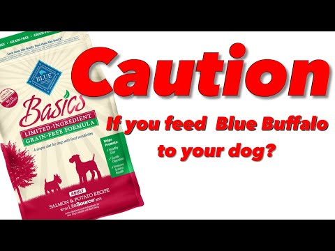 FOUND THIS IN A BAG OF BLUE BUFFALO DOG FOOD