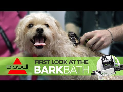 NEW Product Review: The BISSELL BarkBath - Better Bath Time?