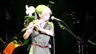 Flute Link Appears at Video Games Live