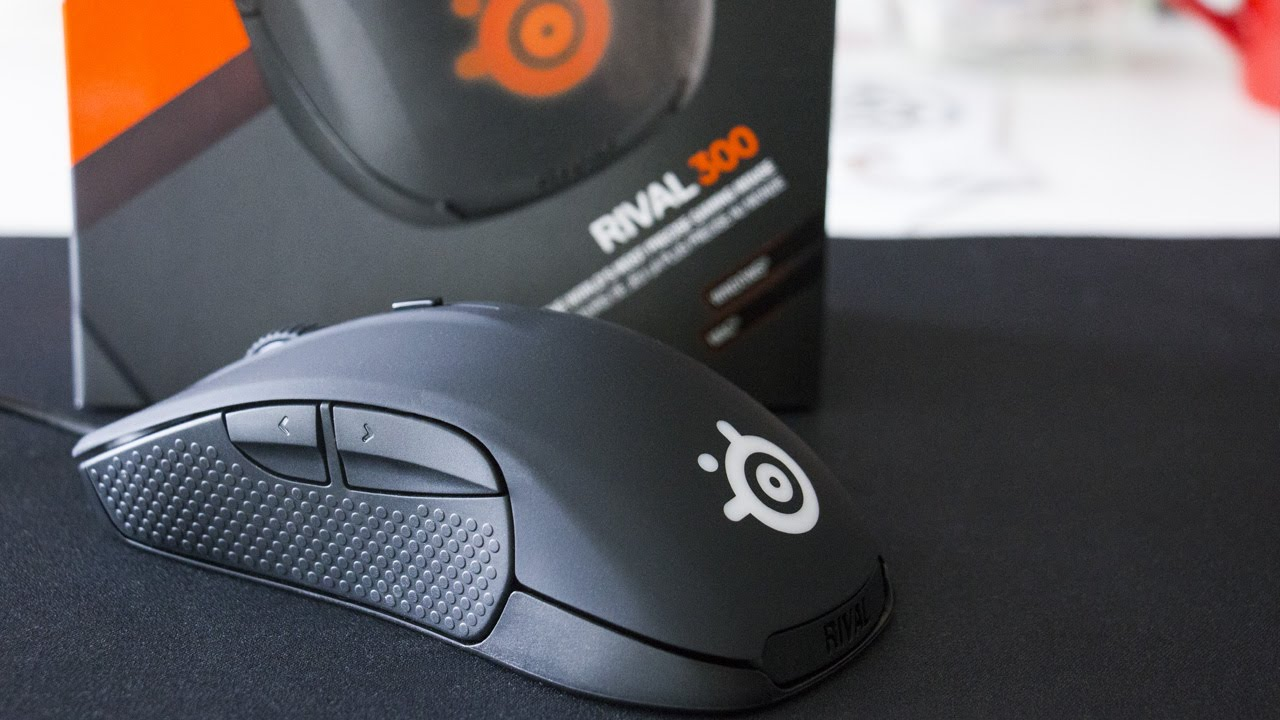 Setup: Rival 300 – Support