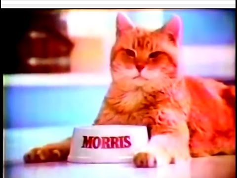 9 Lives Cat Food Commercial Morris The 1977