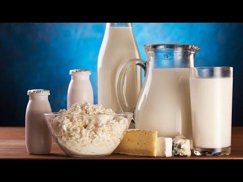 Производство Молока и молочных продуктов как бизнес идея