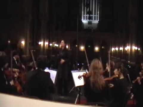 Mozart A Musical Joke - Allegro 1/4