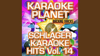 Party-Hit-Mix (Karaoke Version) (Originally Performed By Cora)