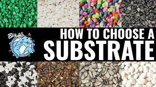 How to Choose an Aquarium Substrate | BigAlsPets.com