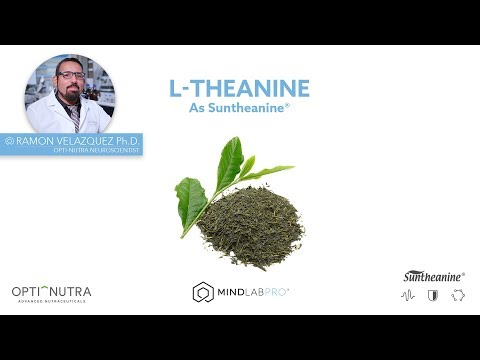 suntheanine®-l-theanine-with-dr.-ramon-velazquez,-ph.d.-|-mind-lab-pro®