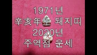 [2020년 경자년(庚子年)신년운세]1971년생 신해년(辛亥年) 돼지띠