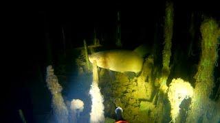 Подводная охота 2019 осень ч2