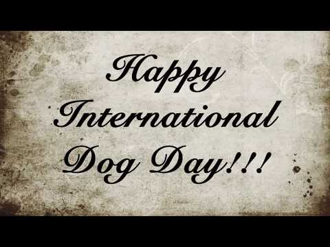 Happy International Dog Day II Celebrating with my Beagles II