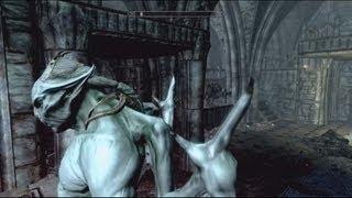Skyrim: Dawnguard - Let