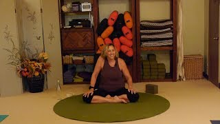 Gentle Yoga Therapy for Rotator Cuff Health and Recovery with Justine Shelton, C-IAYT