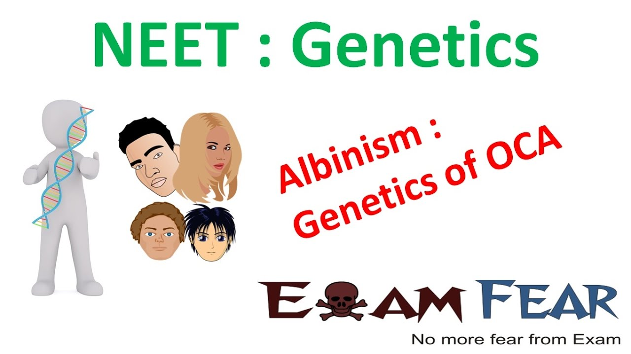 an introduction to the issue of genetic disease albinism A genetic disorder is a genetic problem caused by one or more abnormalities in the genome  examples of this type of disorder are albinism.