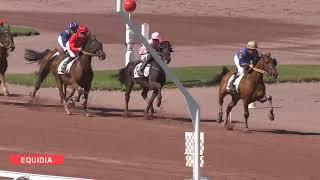 Vidéo de la course PMU PRIX PROFANE