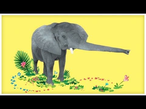 """Animal Songs: """"Dance with the Elephant,"""" by StoryBots"""