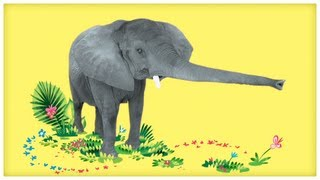 """Video Animal Songs: """"Dance with the Elephant,"""" by StoryBots download MP3, 3GP, MP4, WEBM, AVI, FLV Agustus 2018"""