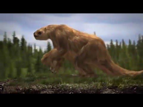 Ice Age Death Trap   PBS Nova
