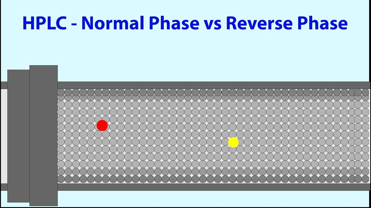 REVERSED PHASE CHROMATOGRAPHY EBOOK