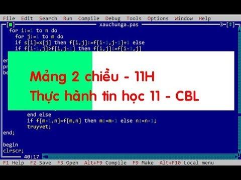 Thực hành tin học 11 – Lớp 11H CBL – Mảng 2 chiều
