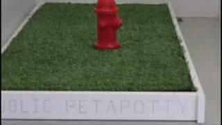 Dog Potty Toilet