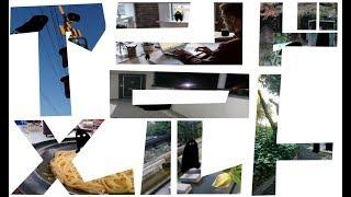 「アンドロメルト」_2017年度アニメーション造形基礎実習:京都精華大学マンガ学部アニメーション学科