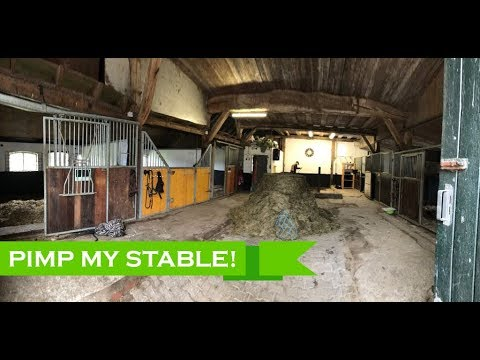 Nalanta's Pimp-my-stable video: New things are coming!!!