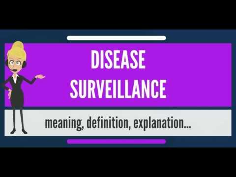 What is DISEASE SURVEILLANCE? What does DISEASE SURVEILLANCE mean? DISEASE SURVEILLANCE meaning