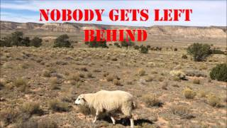 How to Herd Sheep